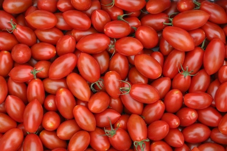 pomodori vitamine