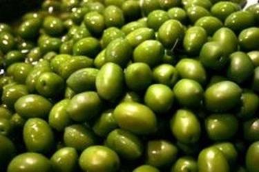 grassi vegetali