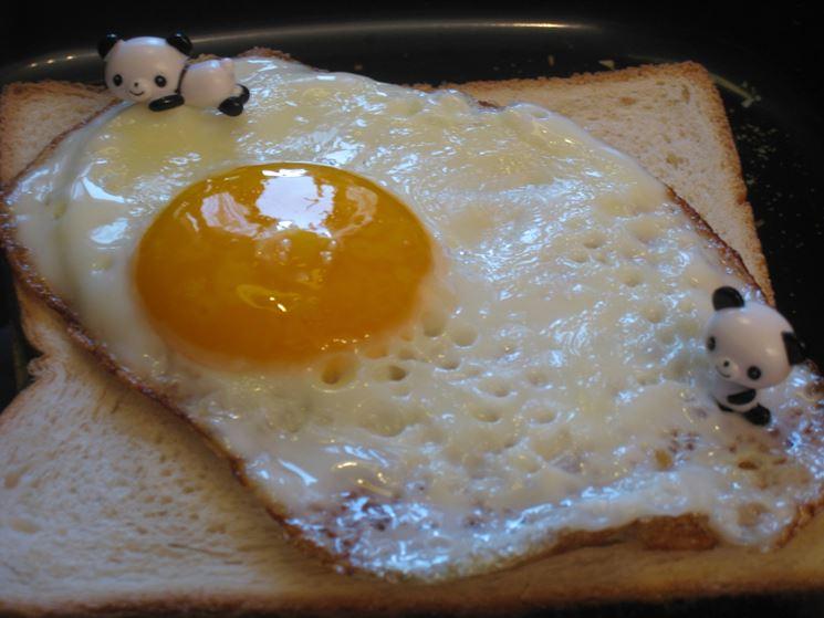 L'uovo è ricco di aminoacidi