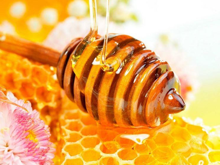 Pappa reale nutriente miele