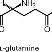 glutammina