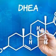 DHEA struttura molecolare