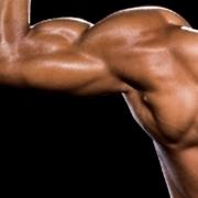 muscoli delle spalle