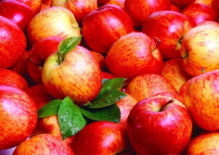 Le mele sono consigliate