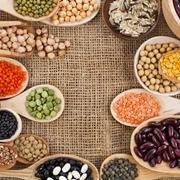 Le maggiori fonti di proteine
