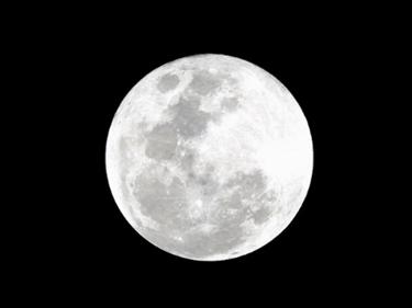 dieta luna