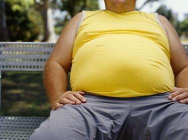 Massa grassa