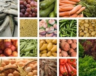 Magnesio negli alimenti
