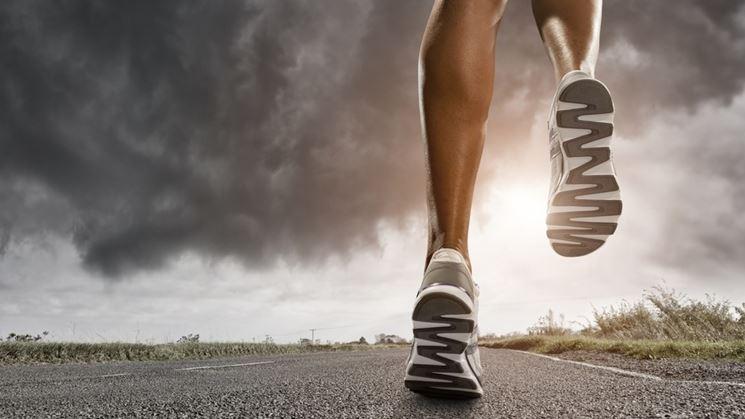 Sessione di allenamento cardio-fitness