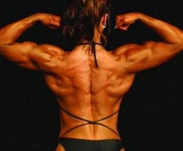 Body building<p />