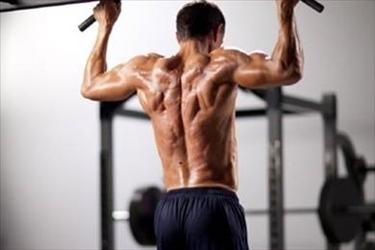 allenamento muscoli