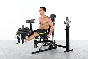 ripetizioni leg extension