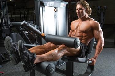 macchina leg extension