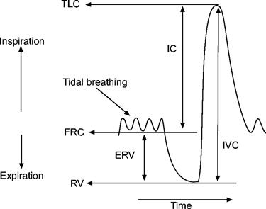 Grafico di una spirometria
