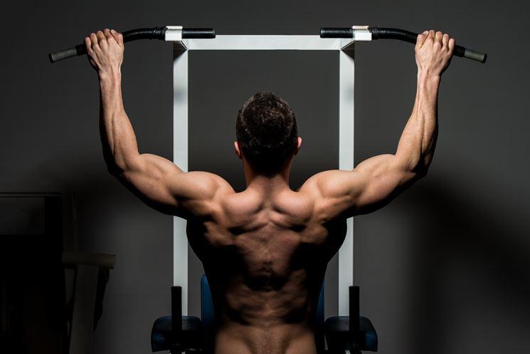 Esercizio muscolare