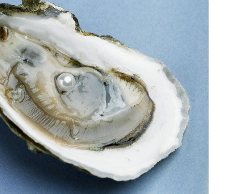 Gli orecchini perle più preziosi sono realizzati con perle vere