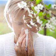 Antistaminico allergie