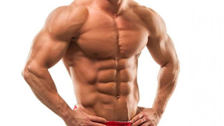 L'efedrina potenzia i muscoli