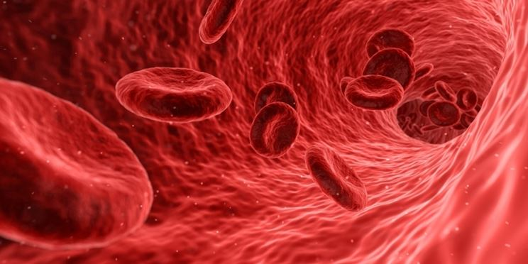 Avvelenamento flusso sanguigno