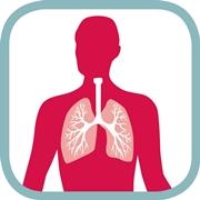 Raffigurazione dei polmoni umani