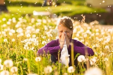 Sintomi della rinite allergica