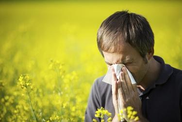 cause allergia