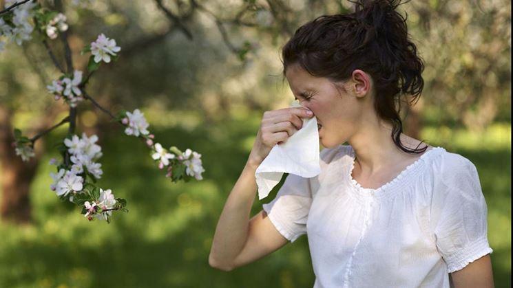 Pollini che provocano reazioni allergiche