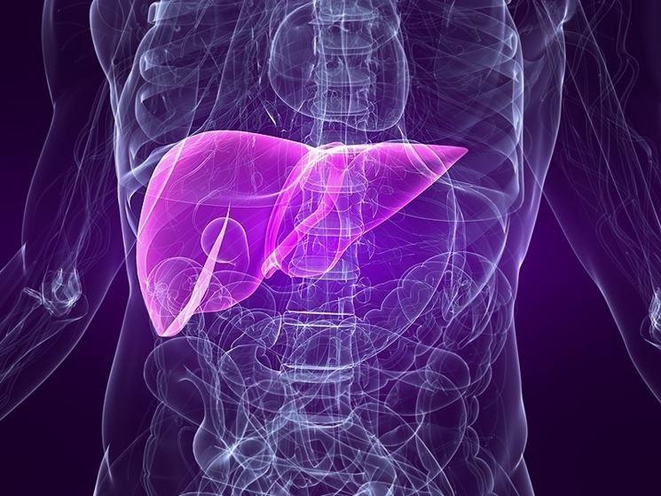 stenosi epatica fegato