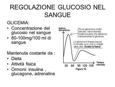Importanza dell'equilibrio glicemico